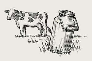 חלב לבריאותינו